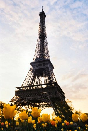 eiffel_tower_sunset_1229124_62548876756e700744f686.jpg